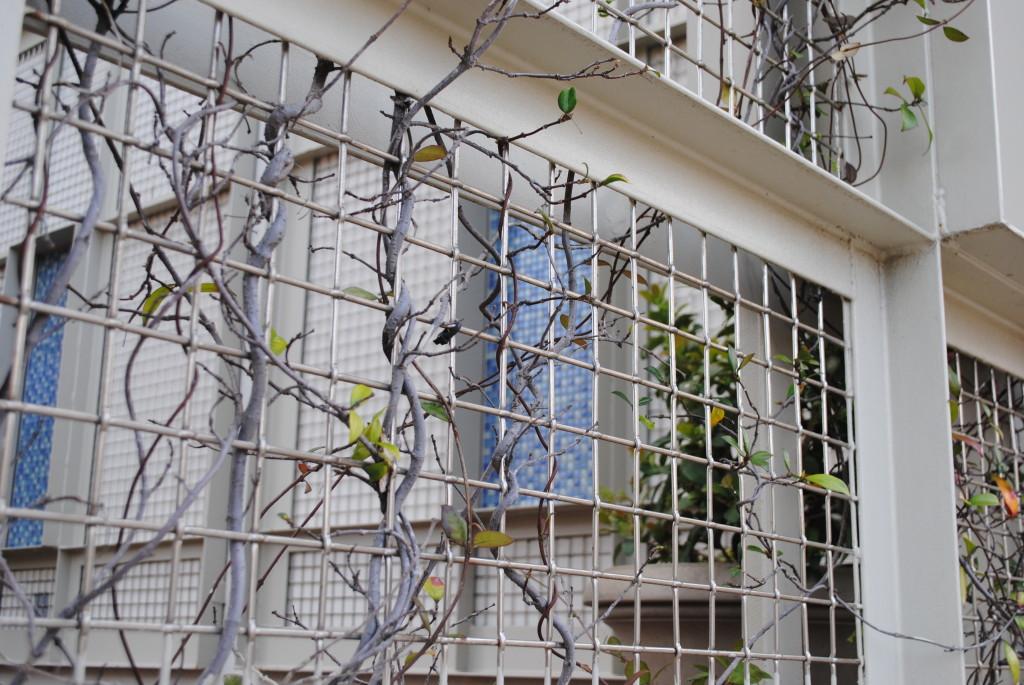 hotel tree fence
