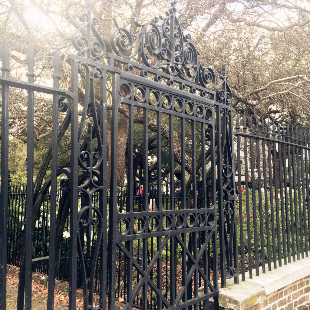 charleston sc wrought iron gate